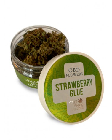 STRAWBERRY GLUE CBD